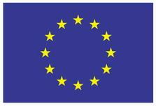 Euro misses 10th birthday bash