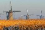 Video: Dutch news roundup, 17 September 2010