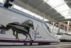 Spain on track to be Europe's high-speed rail champion