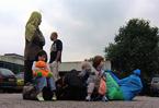 Video: Dutch news roundup, 12 November 2010