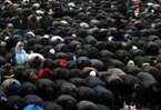 Moscow Muslims pray on sidewalks for want of mosques