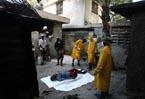 Haiti cholera outbreak 'imported': French expert says