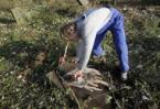 Among graves, Dutch teens build bridges between communities