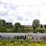 Landscapes, ideas blossom along Berlin Wall death strip