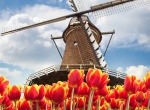 A brief introduction to the Netherlands
