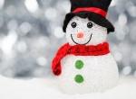 Curious Meredith: Preparing a Belgian Christmas feast