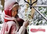 Get cosy at Efteling's winter wonderland
