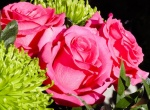 International flower relations: Who's the most romantic?